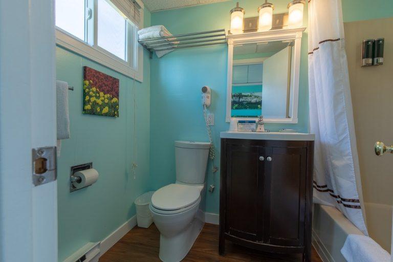 Footbridge Motel Room 09 | Bathroom