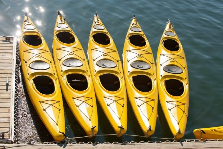 Five kayaks lined up on the shore
